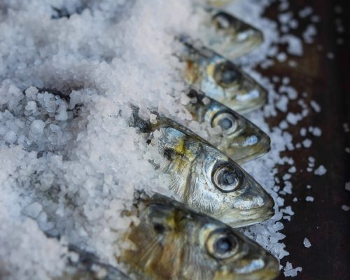 Salt-crusted Sardines